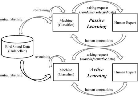 Active learning for bird sound classification via a kernel