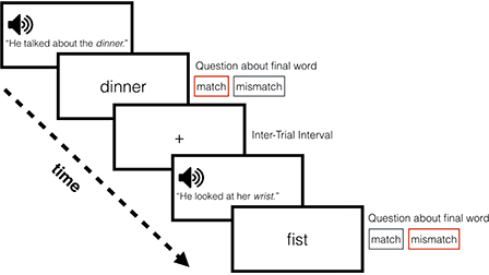 Rapid adaptation to foreign-accented speech and its transfer