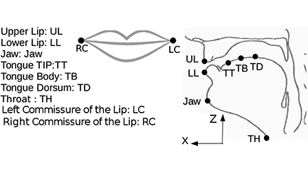 Reconstruction of articulatory movements during neutral