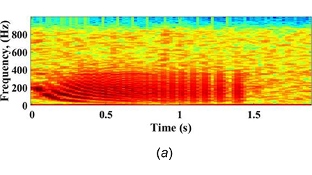 Automatic classification of grouper species by their sounds